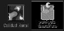 Logo Calidad Rural